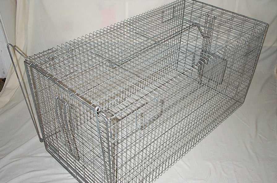 Dog Trap 1200cm