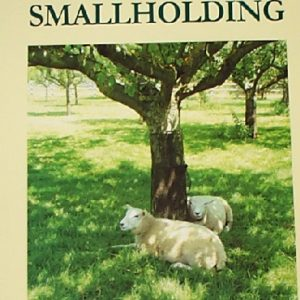 Starting with a Small Holding Book