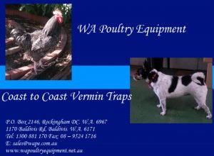 WA Poultry Equipment