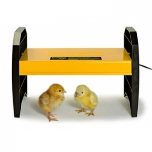 Poultry Brooders (chickens, quail, ducks etc)