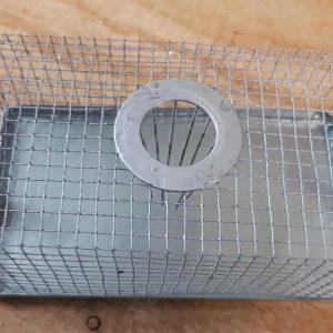 Craypot mouse trap
