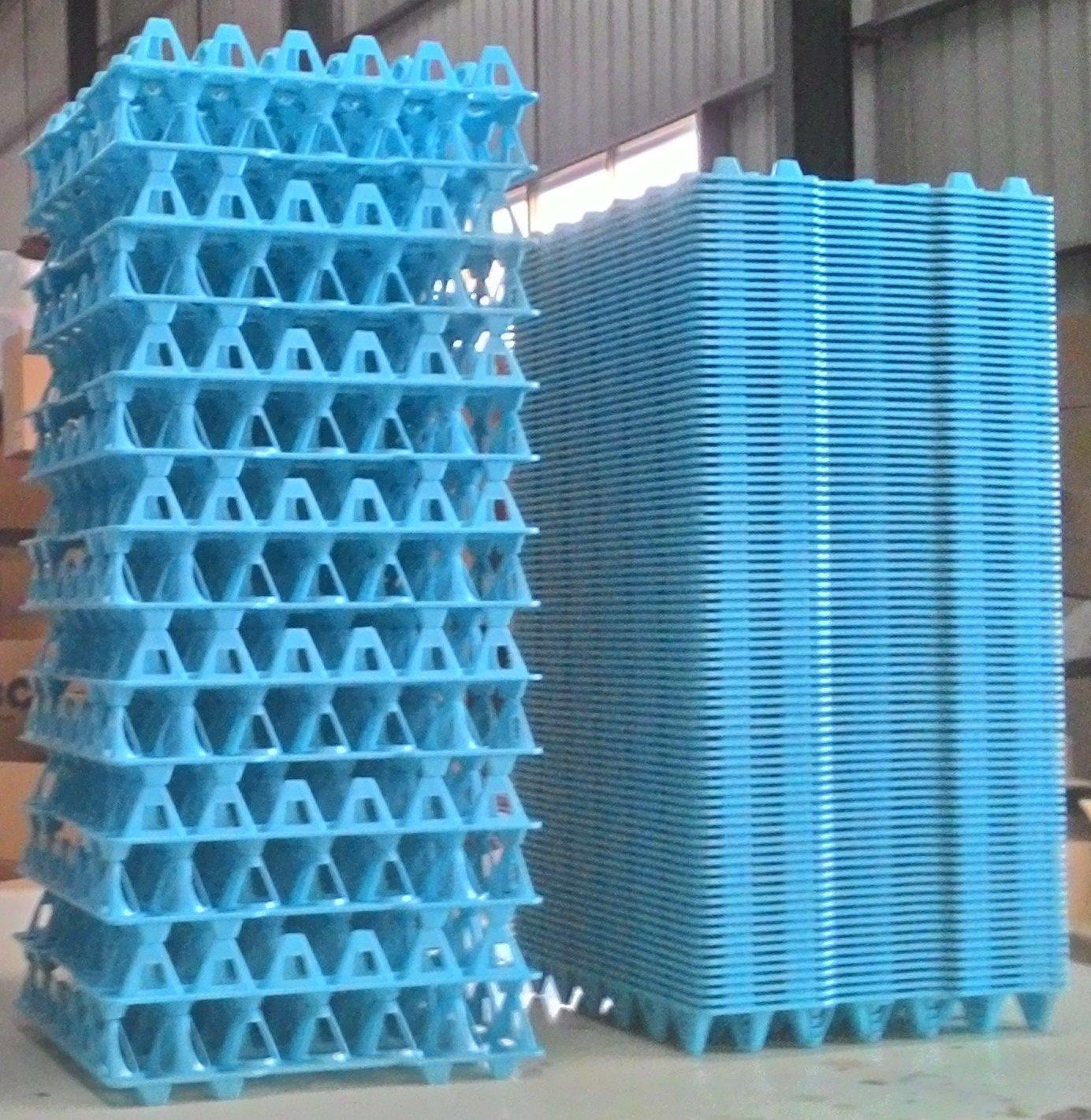 Egg Washing Transport Tray Blue