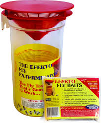 Fly and Fruit Fly Traps