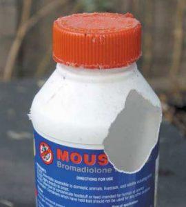 Mouseoff Chewed Bottle